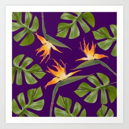 Monstera - and 3 Paradise Flowers Art Print