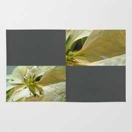 Pale Yellow Poinsettia 1 Blank Q6F0 Rug