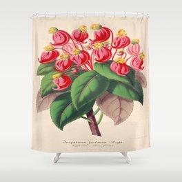 Impatiens gordonii Vintage Botanical Floral Flower Plant Scientific Illustration Shower Curtain