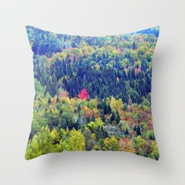 Painted Mountainside Throw Pillow