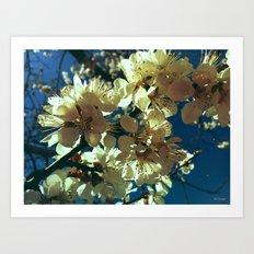 spring is... Art Print