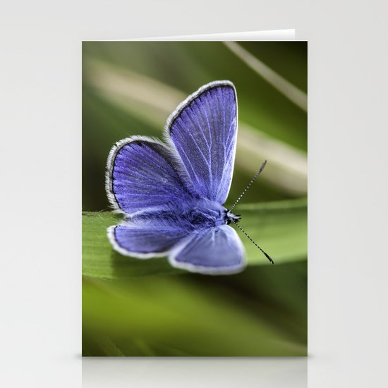 Beautiful Blue Stationery Cards