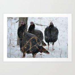 Turkey Trot Art Print