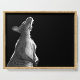 Wallaby Serving Tray