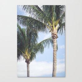 Palms Canvas Print