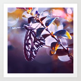 Silver Wings Art Print