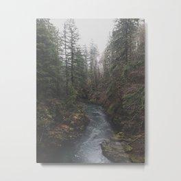 Lewis River Metal Print
