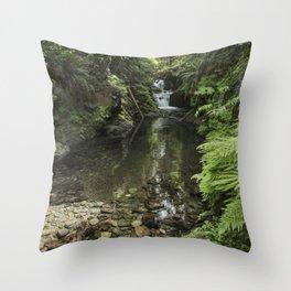 Quinault Rainforest & Falls 5-24-20  Throw Pillow