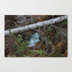 Untitled V Canvas Print
