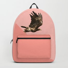 Takeoff Backpack