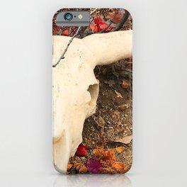 Texas Longhorn Steer Skull Art Photo iPhone Case