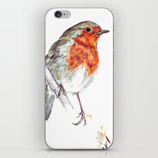 European Robin iPhone & iPod Skin
