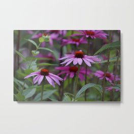 The Beauty of Harmony Metal Print
