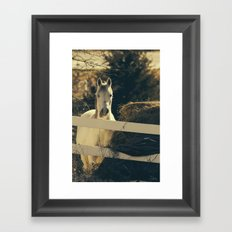 Autumn Mare Framed Art Print