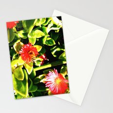 Latest Buzz Stationery Cards