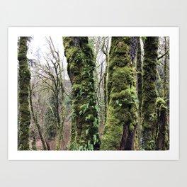 Mossy Escape Art Print