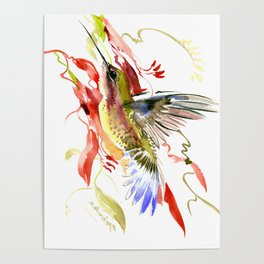 Flying Hummingbird and red tropical foliage Poster