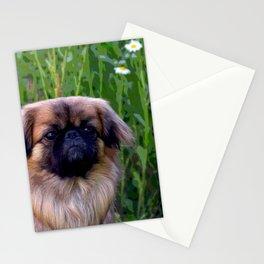 Lion Dog Stationery Cards