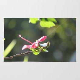 Tethered Hibiscus Rug