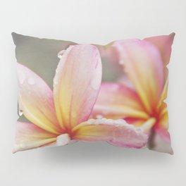 Kealaloa Aloha Wailuku Pillow Sham