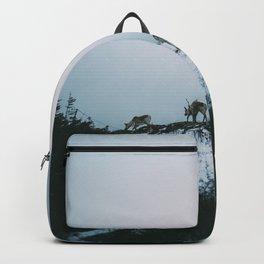 Caribou on Fogo Island Backpack