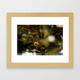 Big Sunny Day Framed Art Print