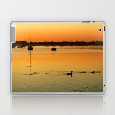 Duck Family Laptop & iPad Skin