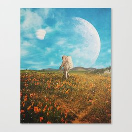 Landloping Canvas Print