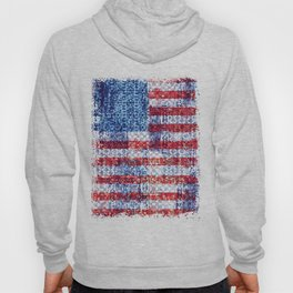Liberty for all Hoody