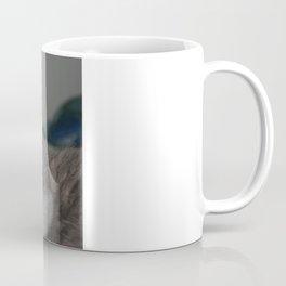 Beautiful Portrait of A Grey Russian Cross Tabby Cat  Coffee Mug