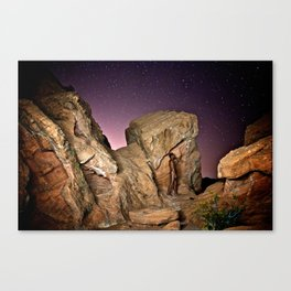 Nude in the Desert Canvas Print