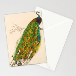 Charles d'Orbigny - Dictionnaire d'histoire naturelle - 1849 Beautiful Colorful Indian Peacock Stationery Cards