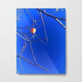 Persimmon tree Metal Print