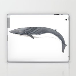 Fin whale Laptop & iPad Skin