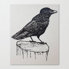 Observant Crow Canvas Print