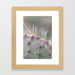 Texas Cactus Framed Art Print