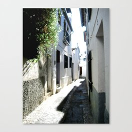 Whitewashed Canvas Print