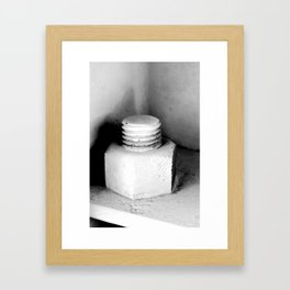 Nuts and... Framed Art Print