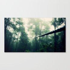 Zip Line Canvas Print