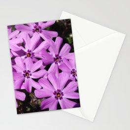 Phlox Flowers Stationery Cards