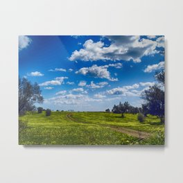 Fields of Gold II Metal Print