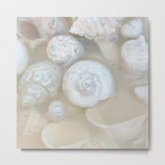 shells II Metal Print