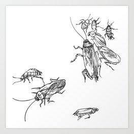 Cucaracha #7 Art Print