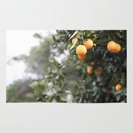Ojai Oranges Rug