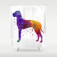 great dane Shower Curtains featuring Great Dane 01 in watercolor by Paulrommer