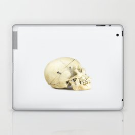 Skull Study 1 - Human Laptop & iPad Skin