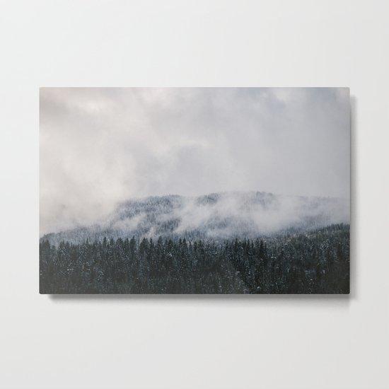 Winter V Metal Print