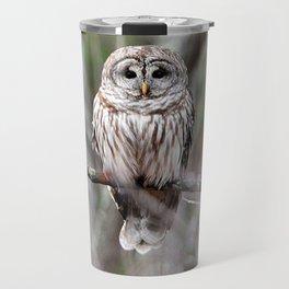 Barred owl Travel Mug