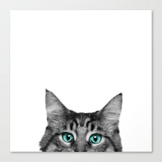 Cat Peeking Canvas Print