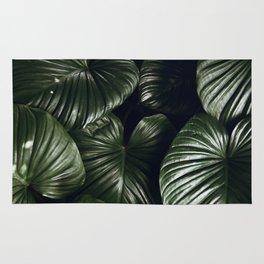 tropical xiv Rug